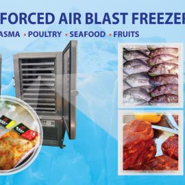 Customer Showcase: Blast Freezing to Success