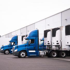 Benefits of Blast Freezers in Logistics