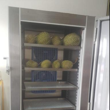durians in blast freezer